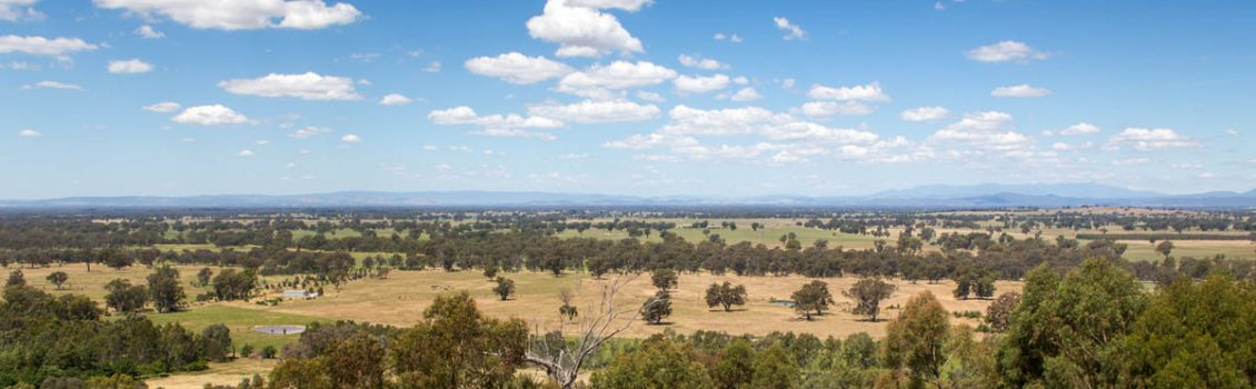 The Warby and Futters Ranges