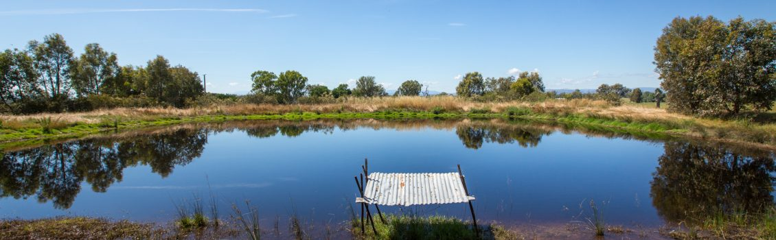 Managing your farm water supplies in dry times