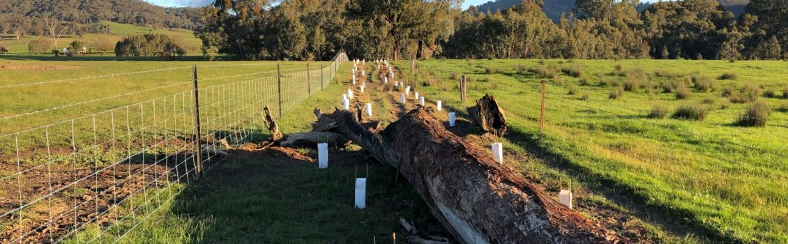 Establishing the building blocks for resilient farming communities